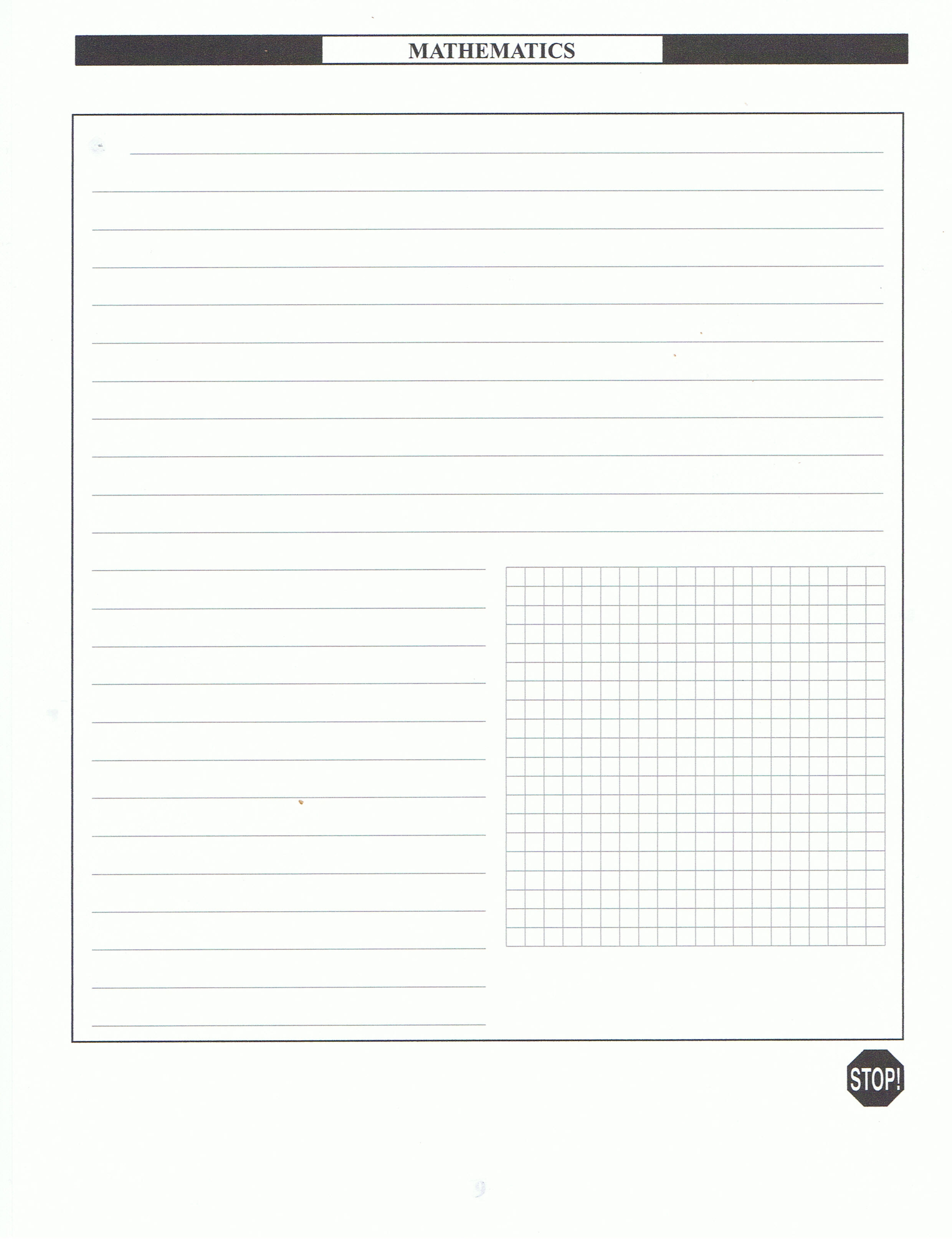 MCAS Graph Practice Open Response Paper  Printable Ledger Pages